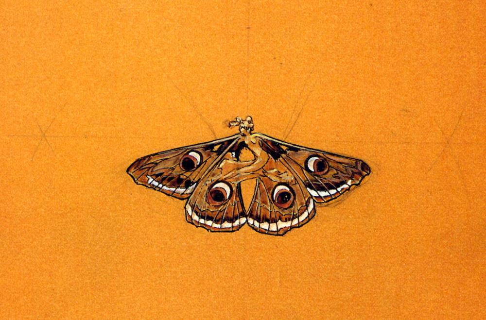 sur un papier orange, dessin d'une femme avec des ailes de papillon