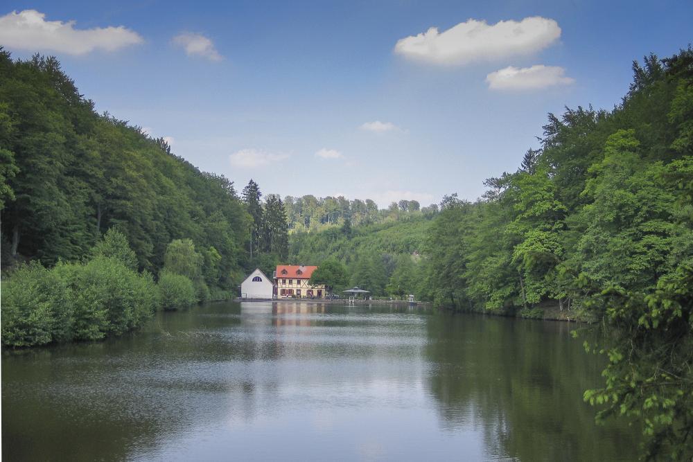 Vue de l'étang du Donnenbach entouré de sa forêt avec en font, la Maison de l'Eau et de la Rivière.